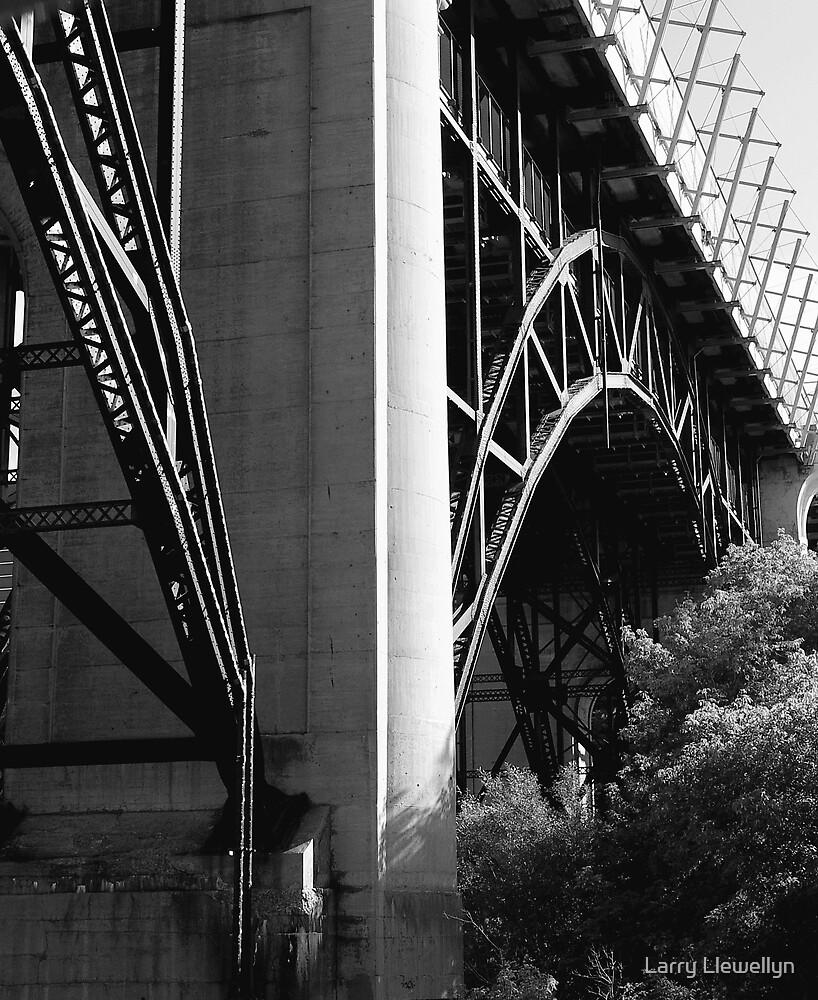 A Bridge..... by Larry Llewellyn