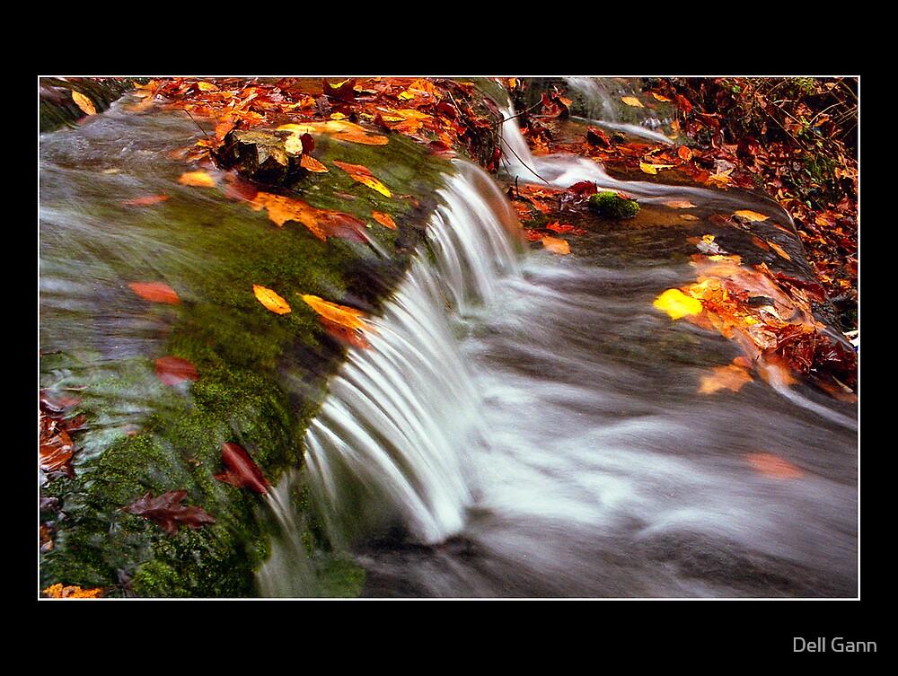 Autumn In Motion by Dell Gann