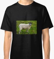 I.m Watching Ewe..........  Classic T-Shirt