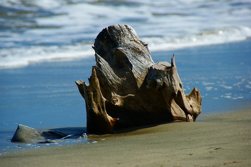 DRIFTWOOD DENARU ISLAND by diddle