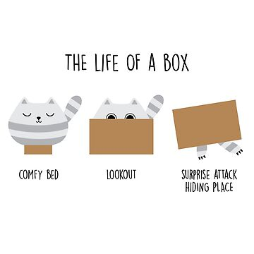 The life of a box by Twoandthree