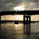 altamha bridge by Heather McSpadden