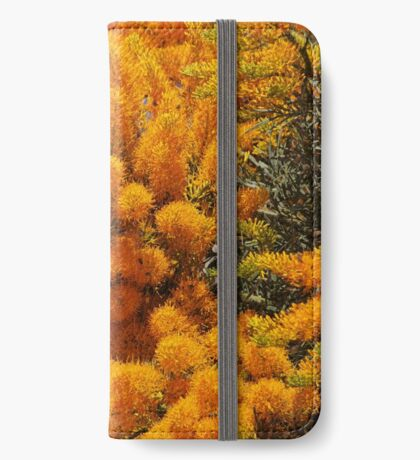 Nuytsia Bloom iPhone Wallet