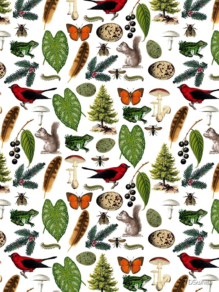 Rustic Woodland Plants And Animals Pattern by TDSwhite