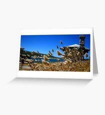 Cape Leuwin  Greeting Card