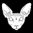 Sphynx Cat by Natasha Sines