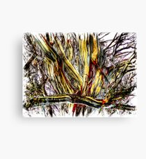 colourful branches Canvas Print