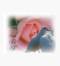 LOVE IS LIFE Photographic Print