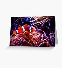 Clownfish and Anemone Greeting Card