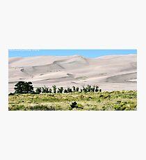 #529    Great Sand Dunes Of Colorado Photographic Print