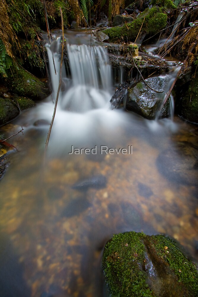 A Soothing Fall by Jared Revell