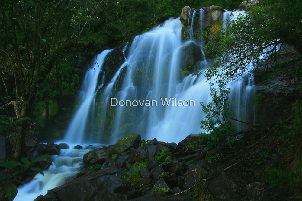 snobs creek .. by Donovan Wilson