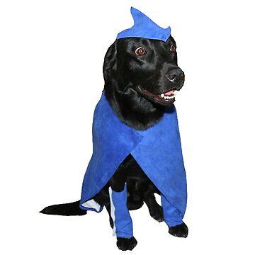 SuperHero Dog by serj92