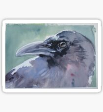 Corvid Sticker