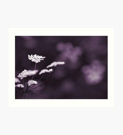 white on violet  Art Print