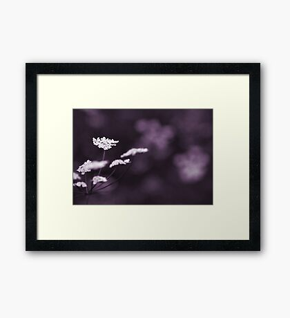 white on violet  Framed Print