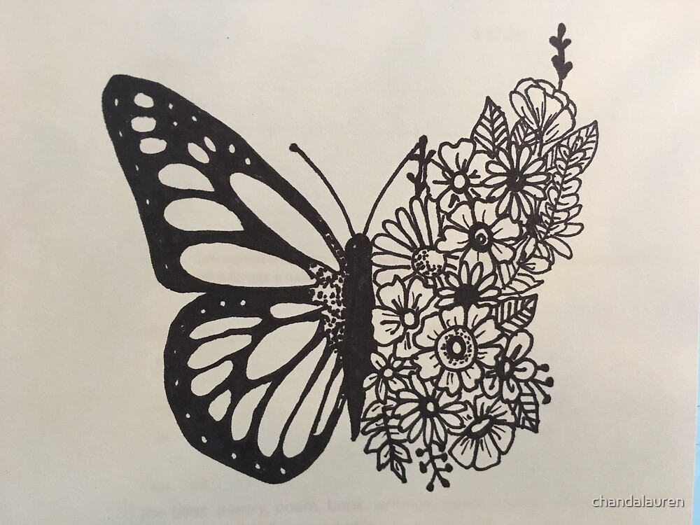 This is a picture of Divine Butterfly Drawing Tumblr