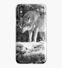Timber Wolf Winter Menaces iPhone Case