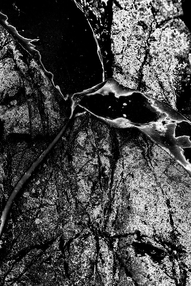 Stone Abstract 2 by Kenart