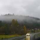 Driving in a fog or low clouds!!! by Larry Llewellyn