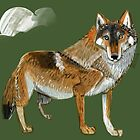 Wolves of the World: Carpathian wolf (Canis lupus lupus) by belettelepink
