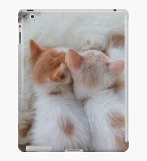 Little Balls of Fur! iPad Case/Skin