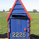 Blue mailbox with brass numbers by Denise Martin