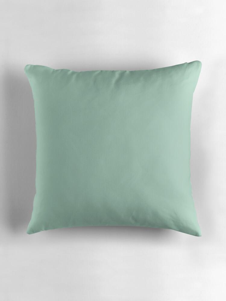 Throw Pillow Seafoam Green :