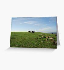 Moo Cows Greeting Card