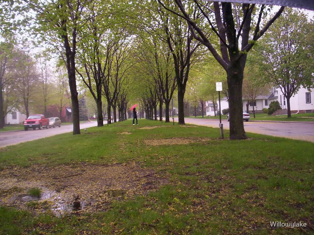 A Walk in the Rain by Willowylake