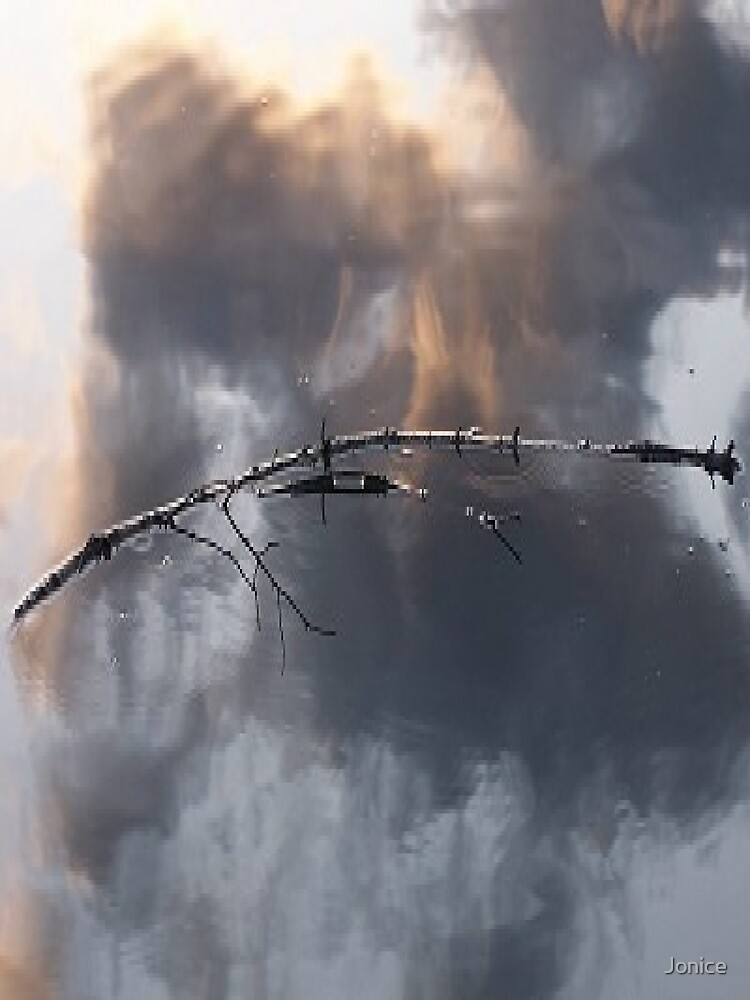 Stick, Water And Reflection by Jonice
