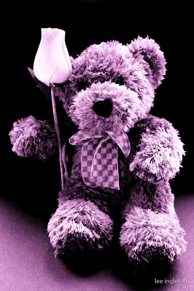 Teddy bear by lee ingleton