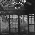 Home [?] After Katrina by Ariel Jackson