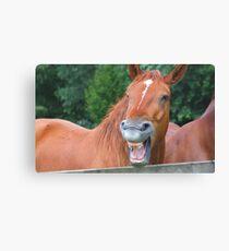 Horse humour........ Canvas Print