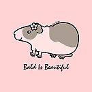 CUTE BALD GUINEA-PIG ... BALD IS BEAUTIFUL  by zoel
