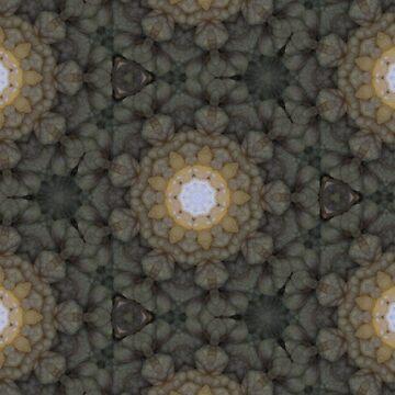 rockworks - cellularity by ionclad