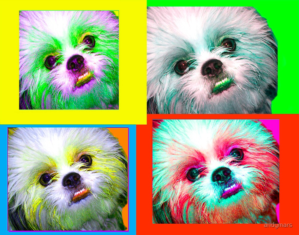 Teddy Andy Warhol effect by andymars