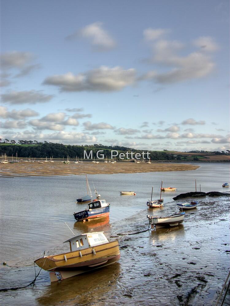 Torridge Estuary by M G  Pettett