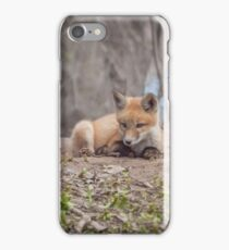 Kit Fox 2011-2   iPhone Case/Skin