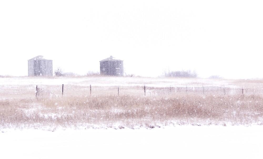 grain bins in blowing snow by Marilylle  Soveran