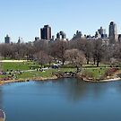 (Tilt-Shift) Central Park, New York.  by Michael Stocks