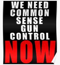 WE NEED COMMON SENSE GUN CONTROL Poster