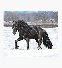 Black Friesian Draft Horse Trotting In Snow Photographic Print