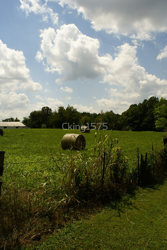 Hay Bales by Cking1575