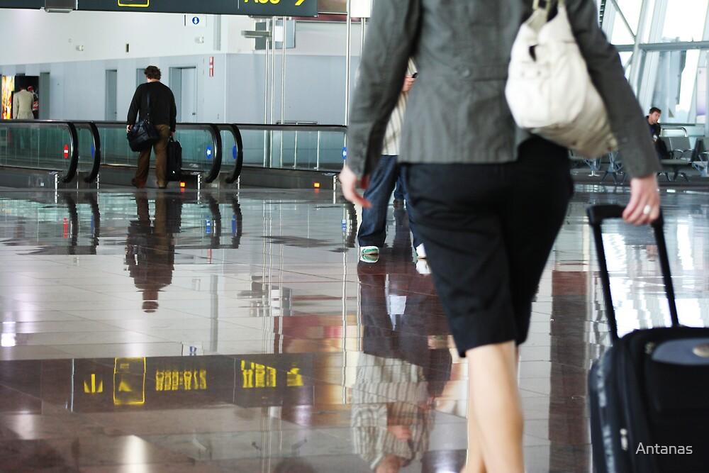 Reflection-Belgium Airport by Antanas