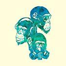 Three Monkey (Troical Blue)  by TurkeysDesign