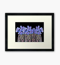 Perfect Pastels - Eremophila Veronica Framed Print
