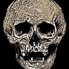 Full Skull With Rotting Flesh Vector by taiche