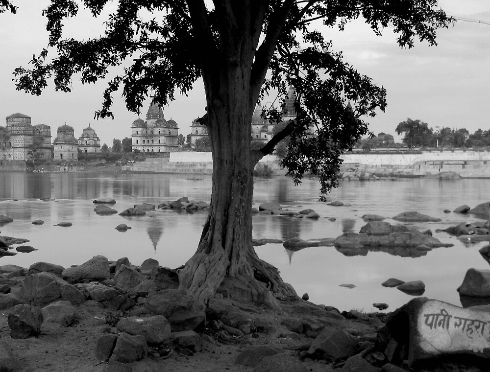 Tree and river by nisheedhi