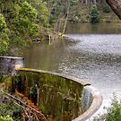 Steps to Nowhere, Colbrook Reservoir, Victoria by Christine Smith